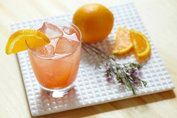 Gordon's Sloe Gin & Orange Juice
