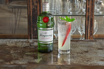 Tanqueray Mexican Collins