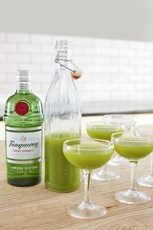 Tanqueray Green Martini