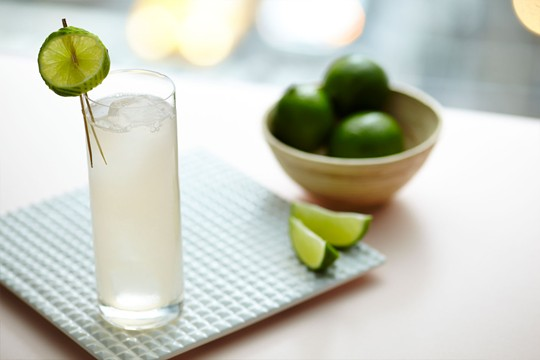 Tanqueray Elderflower Spritzer